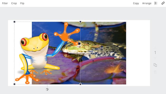 canva add images