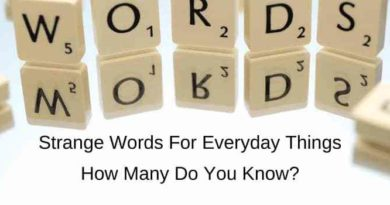 strange words for common objects